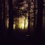Seven Haunting Hikes